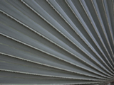Silver Grey Palm Leaf